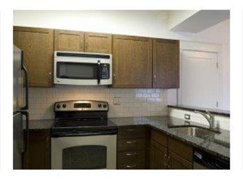 EasyRoommate US - Room for Rent near Westport - Midtown-Westport, Kansas City - $500 pcm
