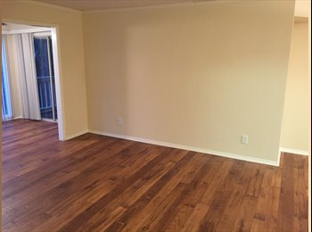 Looking for an awesome roommate!