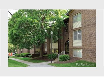 EasyRoommate US - Apartment/room for rent - Central, Baltimore - $1,200 pcm