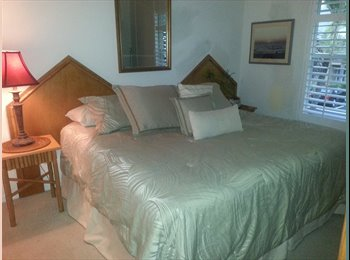 EasyRoommate US - Room For Rent to Single Professional - Naples, Other-Florida - $650 pcm