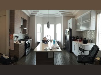 Room Available in Newly Renovated Apt. - Sept. 1