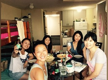 EasyRoommate US - Waikiki Female Room Share - Oahu, Oahu - $500 pcm