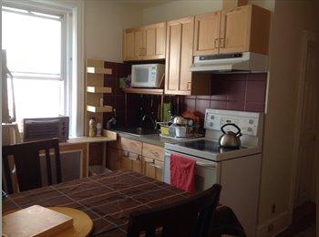 University City $530/$580 room / $1000 entir floor