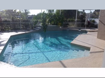 EasyRoommate US - Our own little resort - North Tampa, Tampa - $500 pcm