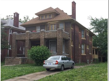 EasyRoommate US - Nice historic house nearby Mid-town (Detroit) - Detroit, Detroit Area - $350 pcm