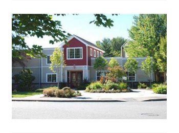 Room for rent in center of Renton