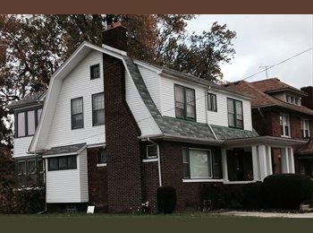 EasyRoommate US - beautiful house near Wayne State - Detroit, Detroit Area - $500 pcm