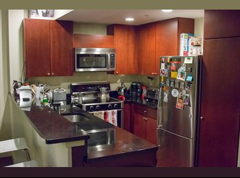 Looking for a Roommate - 1 BR private bathroom