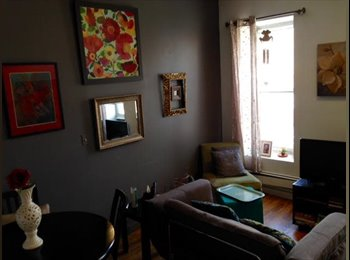 EasyRoommate US - Lovely room Park Slope/Gowanus $275/wk! - Park Slope, New York City - $1,100 pcm