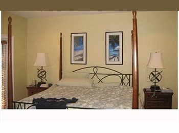 EasyRoommate US - TWO ROOM SHARE - South Beach, Miami - $700 pcm