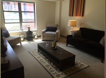 EasyRoommate US - Place at Harrison Court - South End, Boston - $960 pcm