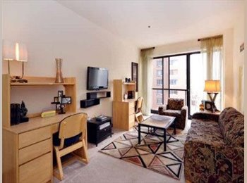 EasyRoommate US - Month of July Lease in Downtown Chicago - Chicago, Chicago - $1,300 pcm
