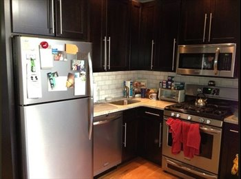 EasyRoommate US - Apartment in South Boston $1300 - South Boston, Boston - $1,300 pcm