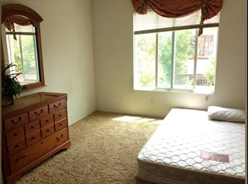 Spacious Room for Rent