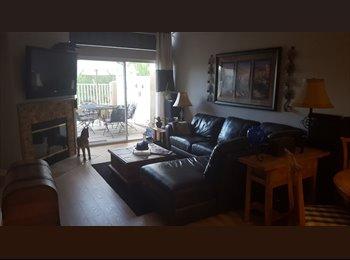 EasyRoommate US - Portola Hills Room - Lake Forest, Orange County - $800 pcm