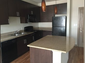 Room available in downtown Birmingham