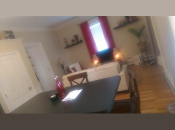 EasyRoommate US - Beautiful apartment with an empty room - Providence, Greater Providence - $600 pcm