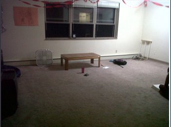 EasyRoommate US - Spacious room  in apartment owned by UPitt - East Allegheny, Pittsburgh - $450 pcm