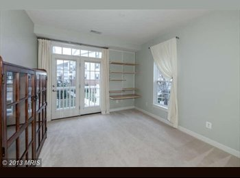 1 BR in Alexandria for Rent