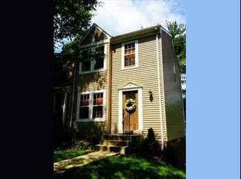 EasyRoommate US - $799 / 320ft2 - $799 Basement Rental with Private - Silver Spring, Other-Maryland - $799 pcm
