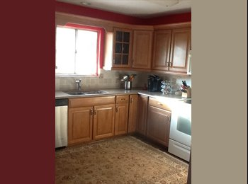 Professional roommate wanted