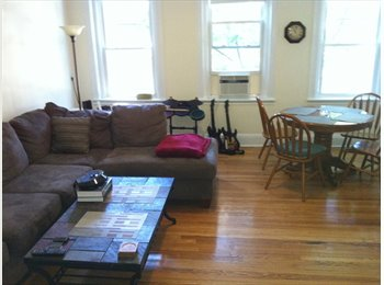 Roommate wanted for sunny spacious furnished apt, 2/16 or...