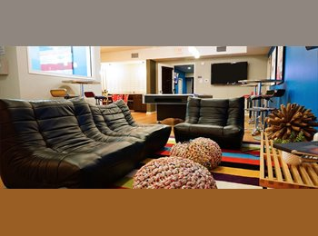 EasyRoommate US - CHEAP FURNISHED ROOM BY UMN - St Paul West, Minneapolis / St Paul - $531 /mo