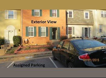 EasyRoommate US - renovated basement for rent - Alexandria, Alexandria - $950 pcm