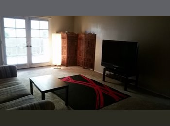 EasyRoommate US - Room available in Tempe - Chandler, Tempe - $500 pcm