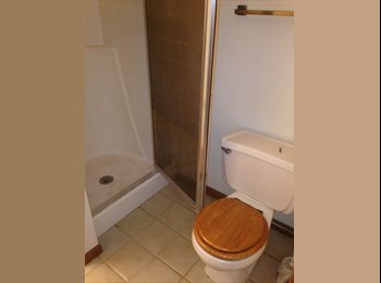 EasyRoommate US - Need 1 to 2 roommates - Downtown, Madison - $500 /mo
