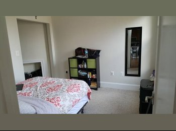 EasyRoommate US - Looking for a new roommate in 2bd/2bth in CH - Columbia Heights, Washington DC - $1,350 pcm