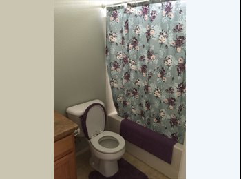 Roommate wanted in Henderson, NV