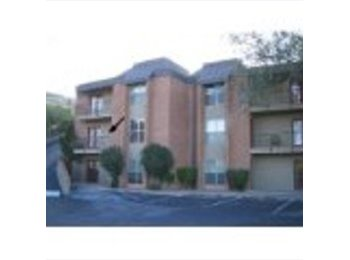 EasyRoommate US - EXCELLENT APPARTMENT FOR RENT!!! CLOSE TO UTEP!!! - Other El Paso, El Paso - $825 /mo
