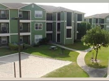 EasyRoommate US - Looking for Male roommate - Other-Texas, Other-Texas - $520 pcm