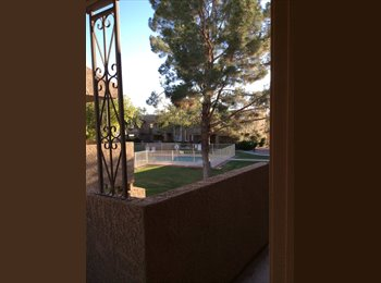 Room available in South Scottsdale