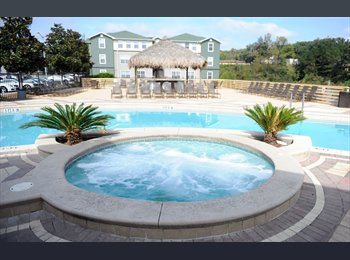 EasyRoommate US - sublease at Campus Park - 4/4 for $399 - Panama City, Tallahassee - $399 pcm