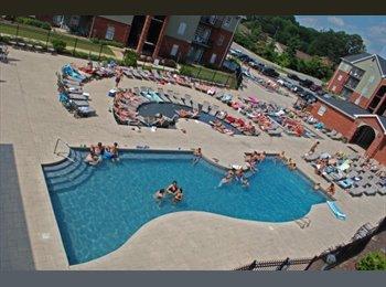 EasyRoommate US - Huge furnished apartment with amazing amenities! - Tuscaloosa, Tuscaloosa - $449 pcm