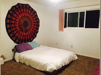 EasyRoommate US - Master bedroom for rent two blocks from the beach!  - Ocean Beach, San Diego - $890 /mo