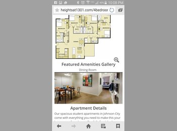 EasyRoommate US - apartment for rent - Blackwater, Johnson City - $405 pcm