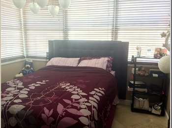 EasyRoommate US - A room for rent August only Miami beach - Miami Beach, Miami - $1,000 pcm