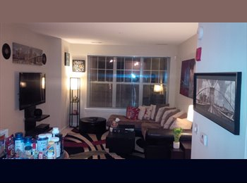 Furnished Room w/ba in modern 2Bd 2Ba Apt available
