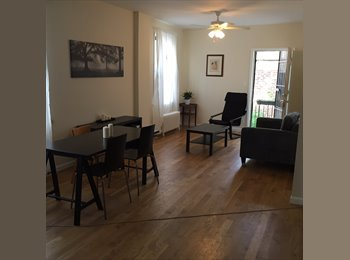 room available in 3 bed apt
