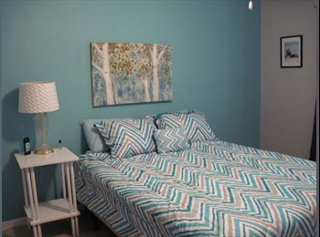 EasyRoommate US - Room for rent in condo  - Columbia, Columbia - $500 /mo