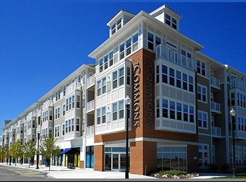 EasyRoommate US - 1 bedroom available in 2 bedroom apartment  - Quincy, Boston - $750 pcm