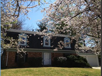 EasyRoommate US - 3 rooms in beautifully renovated home in Potomac for rent - Bethesda, Other-Maryland - $650 pcm