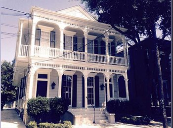 EasyRoommate US - Beautiful 2 bed 1 bath Apartment for Rent - Uptown, New Orleans - $2,500 /mo