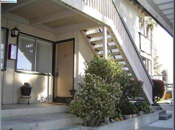 EasyRoommate US - Great Condo, Great Location - Concord, Oakland Area - $500 pcm
