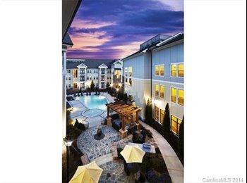 Luxury Charlotte Apartments