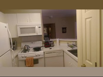 EasyRoommate US - $1250 Downtown Stamford - Apt Share (Morgan St) - Stamford, Stamford Area - $1,250 pcm