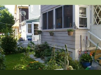 Looking for roommate in Dorchester, $800 a month, available...